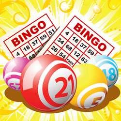 Best in Online Bingo