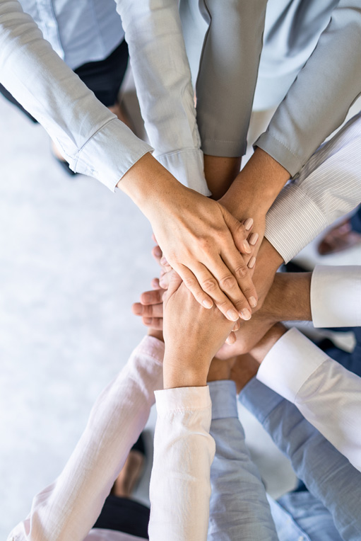 Teamwork - Best in Online Sportsbooks